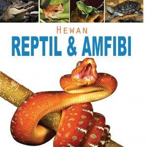 buku hewan reptil dan amfibi