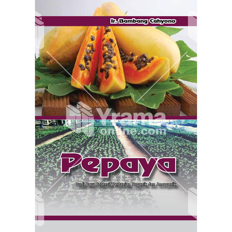 buku pepaya budi daya intensif pertanian
